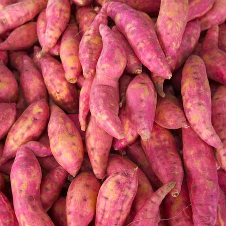 heap of sweet potatoes in market Reklamní fotografie