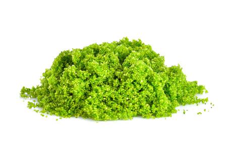 Swamp algae on a white background Stock Photo
