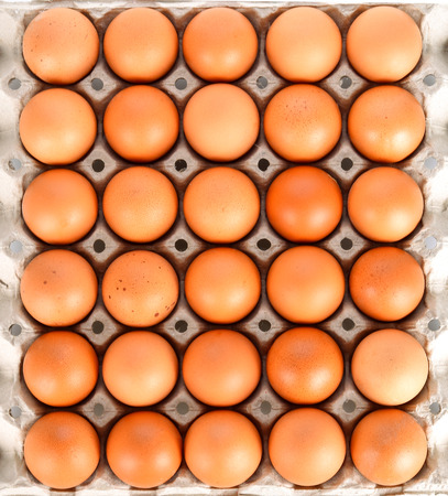 Eggs in the panel on white background Banco de Imagens