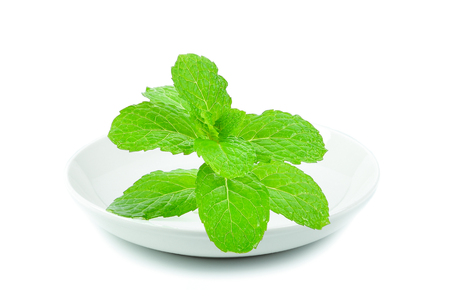Mint leaves in white plate on white background
