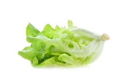 lettuce isolated on white background Banco de Imagens