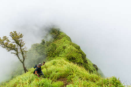 green ridge: Foggy clouds cover hikers team on top of green mountain ridge.