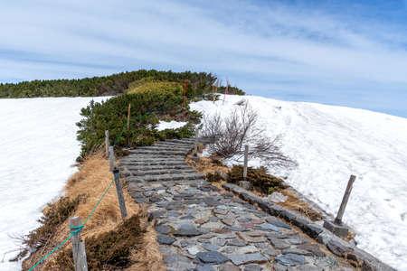 Nature trail at Murodo on Tateyama Kurobe Alpine Route. Stock fotó