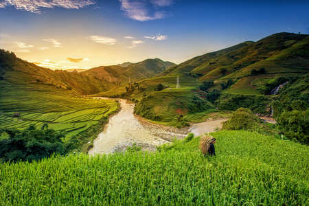 green landscape: Rice fields on terrace in rainy season at Mu Cang Chai, Yen Bai, Vietnam. Rice fields prepare for transplant at Northwest Vietnam