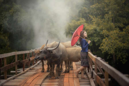 politely: Thai woman wearing typical Thai dress, on bridge and Buffalo background, identity culture of Thailand