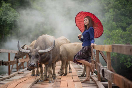 an obeisance: Thai woman wearing typical Thai dress, on bridge and Buffalo background, identity culture of Thailand