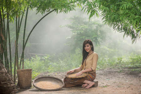 chaff: Beautiful Thai Asian women winnow rice separate between rice and rice chaff identity   in traditionally wearing typical Thai dress culture of Thailand
