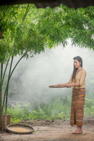 Beautiful Thai Asian women winnow rice separate between rice and rice chaff identity   in traditionally wearing typical Thai dress culture of Thailand