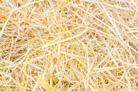 Background of rice straw,yellow. Standard-Bild