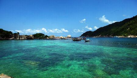 koh: Sea Koh Tao Surat Thani Thailand