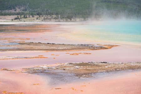 yellowstone: Yellowstone park