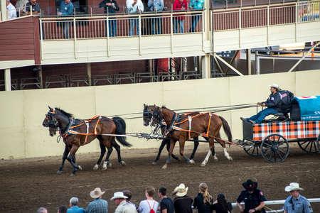calgary stampede: Calgary Stampede