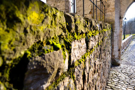 Stone wall covered in moss Stock Photo - 18218093