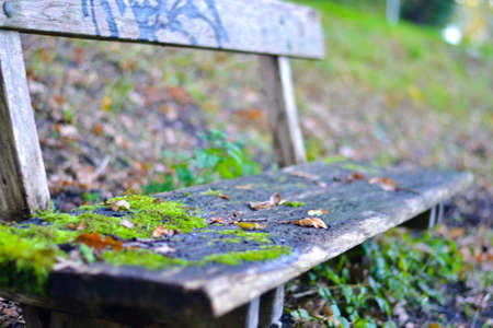 Bench Stock Photo - 19443472