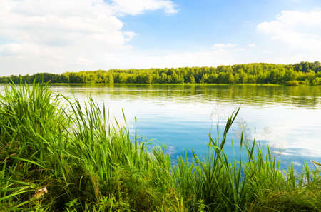 Green bank of a lake. Saturated colors. Stock Photo - 5023992