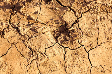 Cracks on a ground. Texture or background. Stock Photo - 5110608