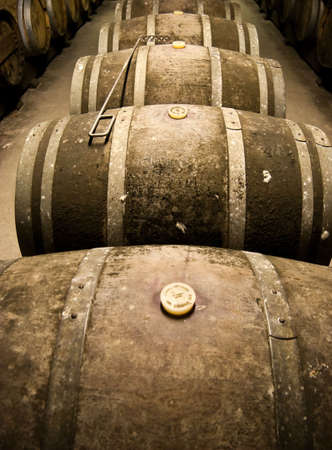 Wine barrels in cellar. Wide angle view. Stock Photo