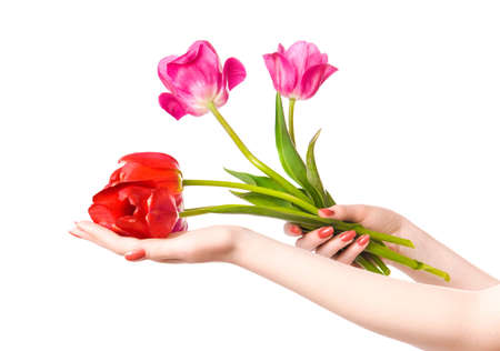 Woman hands with flowers. Isolated on white. photo
