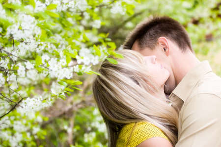 embraces: Couple in cherry tree flowers. Soft focus effect.