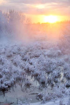 Winter sunset landscape. Water and frozen grass. photo