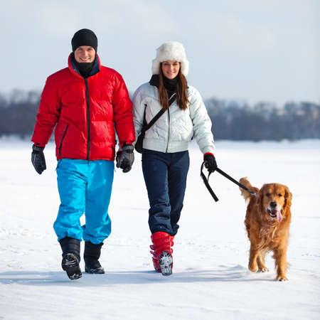 perro labrador: Joven pareja caminando con perros. Foto de archivo