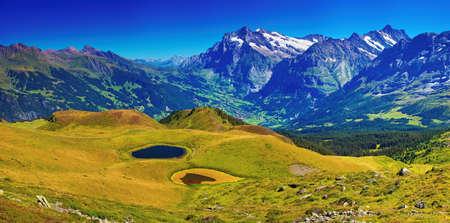 mountain meadow: Swiss Alps mountains summer panorama. Stock Photo
