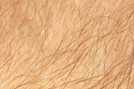 human skin texture: Human skin with hair close-up