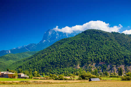 pyrenees: Pyrenees mountains summer view.
