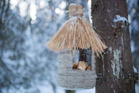 feeders: Bird feeders in winter forest.