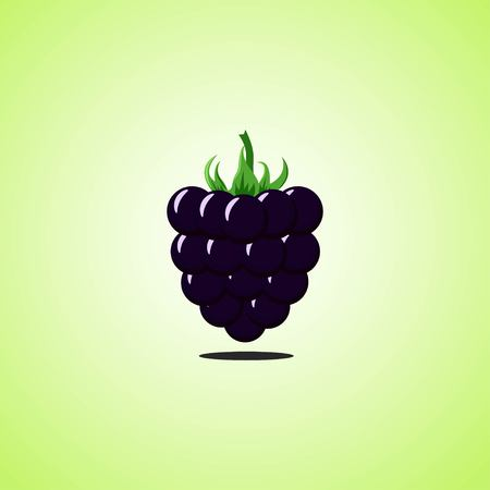 Blackberry icon isolated on green background. Colorful cartoon fruit icon. Vector illustration Illustration