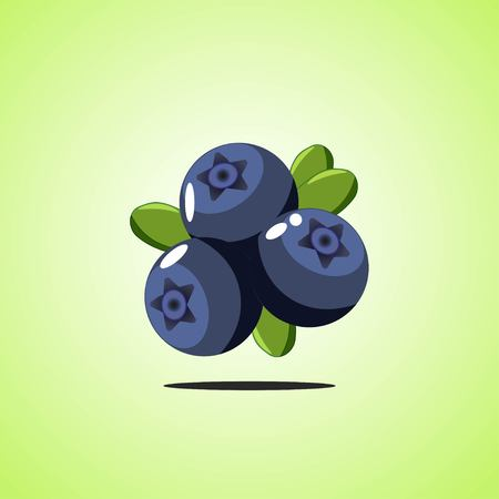 Blueberries icon isolated on green background. Colorful cartoon fruit icon. Vector illustration EPS 10.