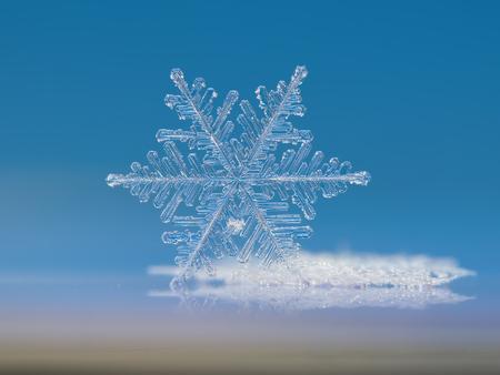 実際スノーフレーク マクロ写真:。これは、明るい青色の背景に対して端に立っている非常に大きなシダのような樹状突起、雪の結晶です。
