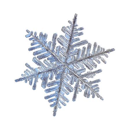 눈송이 흰색 배경에 고립. 실제 스노우 크리스탈의 매크로 사진 : 복잡하고 우아한 모양, 미세한 육각형 대칭, 광택이있는 표면 및 길고가는 가지가있