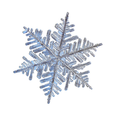 Snowflake isolated on white background. Macro photo of real snow crystal: large stellar dendrite with complex, elegant shape, fine hexagonal symmetry, glossy relief surface and long, ornate arms with side branches.