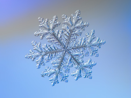 Snowflake sparkling on smooth gradient background. Macro photo of real snow crystal: large stellar dendrite with complex elegant shape, perfect hexagonal symmetry, glossy relief surface. long ornate arms and beautiful inner pattern. Stock Photo