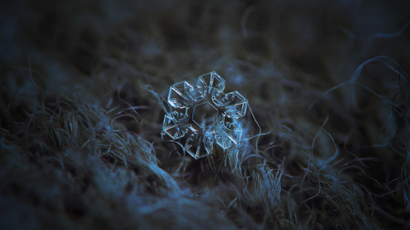Snowflake glittering on dark woolen textured background. Macro photo of real snow crystal: small star plate with fine hexagonal symmetry, glossy relief surface, short broad arms and beautiful inner pattern.
