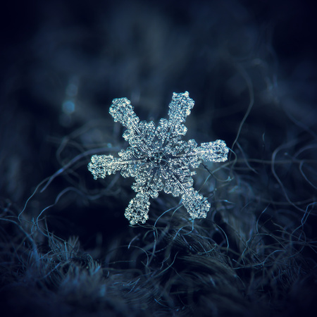 Snowflake glittering on dark woolen textured background. Macro photo of real snow crystal, covered with rime bubbles: large star plate with fine hexagonal symmetry, glossy relief surface, short broad arms and beautiful inner pattern.