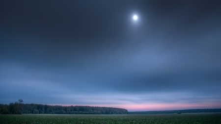 Tranquil landscape with large, flat clover field in twilight, under full moon, seen through light clouds, with distant dark forest. This is high dynamic range photo, combined from four exposures.
