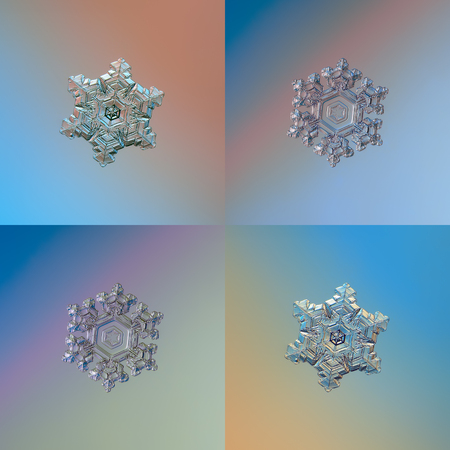 Set with two color variants of two real snowflakes, glittering on smooth gradient background: small snow crystals of stellar dendrite type with short, glossy arms and big, central hexagons.