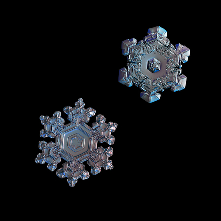 Two snowflakes isolated on black background. Macro photo of real snow crystals: small star plates with glossy relief surface, simple shapes, large central hexagons and complex inner patterns.