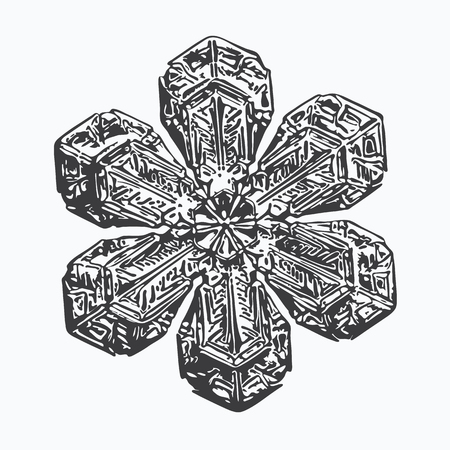 Black snowflake on white background. This vector illustration based on macro photo of real snow crystal: beautiful star plate with fine hexagonal symmetry, six short, broad arms and glossy surface.