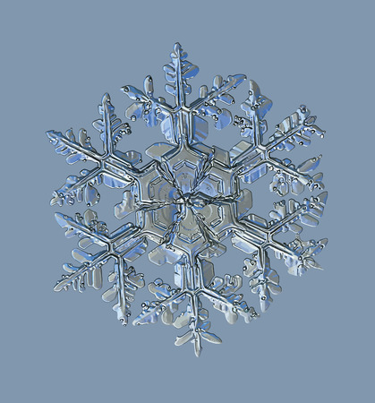 Snowflake on blue background. This vector illustration based on macro photo of real snow crystal: small stellar dendrite with fine hexagonal symmetry, complex ornate shape and six elegant arms.