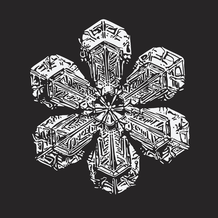 White snowflake on black background. This vector illustration based on macro photo of real snow crystal: beautiful star plate with fine hexagonal symmetry, short broad arms and complex inner pattern. Illustration