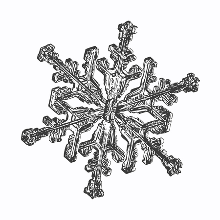 This vector illustration based on macro photo of real snowflake: large stellar dendrite snow crystal with fine hexagonal symmetry, complex ornate shape and six long, elegant arms with side branches.