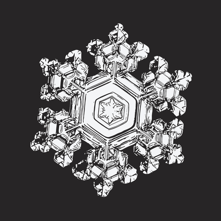 White snowflake on black background. This vector illustration based on macro photo of real snow crystal: small star plate with six short, broad arms, glossy surface and complex inner structure. Illustration