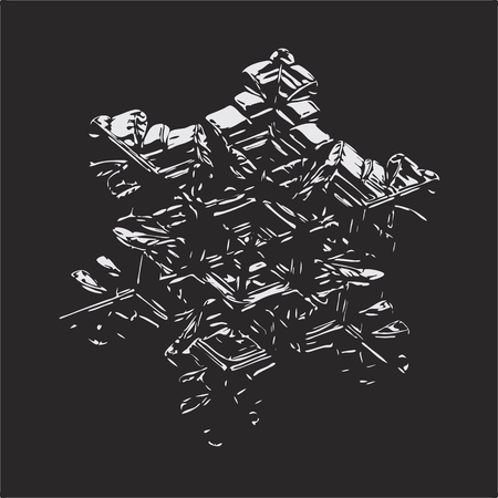 Snowflake glittering on black background. This vector illustration based on macro photo of real snow crystal: small star plate with six short, broad arms, glossy surface and complex inner structure.