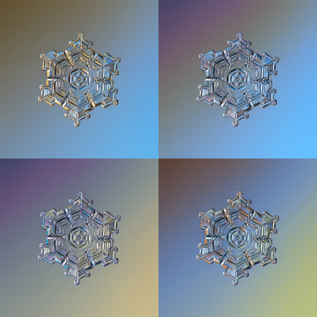 Set with four color variants of real snowflake, glittering on smooth gradient background: small snow crystal of star plate type with glossy relief surface and complex inner pattern.