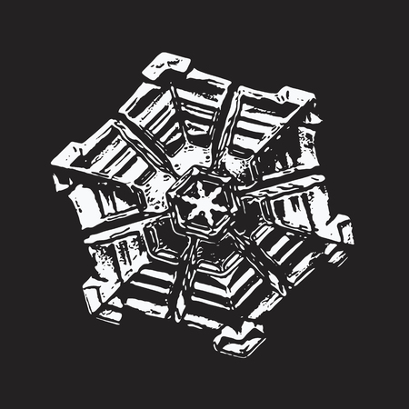 This vector illustration based on macro photo of real snowflake: small sectored plate with simple hexagonal shape and rich, complex inner pattern.