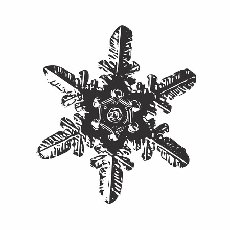 Snowflake on white background. This vector illustration based on macro photo of real snow crystal: small stellar dendrite with simple, straight arms and unusual ring pattern around hexagonal center.