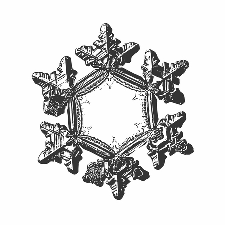 Snowflake on white background. This vector illustration based on macro photo of real snow crystal: beautiful star plate with six short, relief arms and large, flat and empty central hexagon.